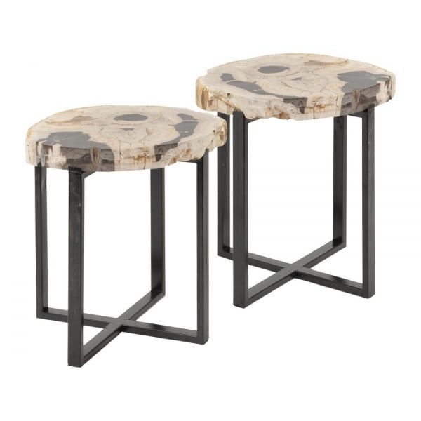 buy two petrified wood and metal circular side tables at fusion living